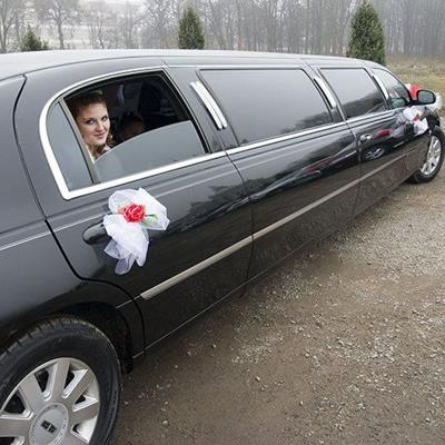 BRIDE, STRETCH, WHEELS, LUXURY, WINDOWS, DOORS, LIMOUSINE, RIBBONS, CAR, WEDDING