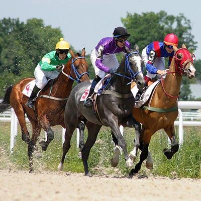 SILKS, TRACK, RAIL, BLINKERS, STIRRUPS, SADDLE, RACEHORSES, GALLOP, JOCKEYS, SAND, HELMETS