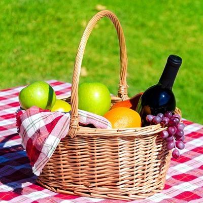 PICNIC, BASKET, WINE, ORANGE, APPLE, BLANKET, GRAPES, NAPKIN, GRASS, BOTTLE