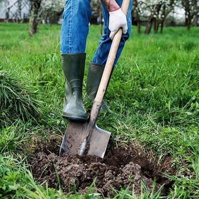 EARTH, TOOL, GARDEN, GLOVE, GRASS, JEANS, DIGGING, BOOTS, SPADE, SOIL, RUBBER, HANDLE, PLANTS