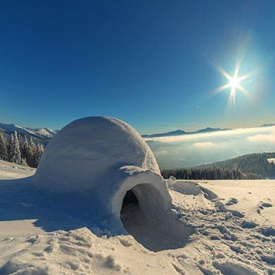 IGLOO, ARCTIC, SNOW, WINTER, STRUCTURE, FOREST, ICE, INUIT, SHELTER, HOME, SUNLIGHT, DOME