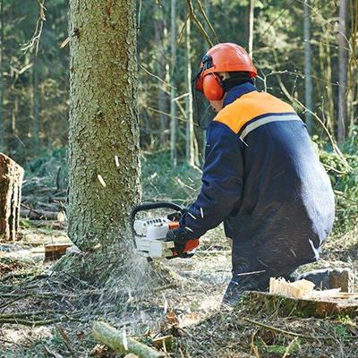 CHAINSAW, TREE, FOREST, LOGGER, LUMBERJACK, TOOL, WORKER, TIMBER, HELMET, LOGGING