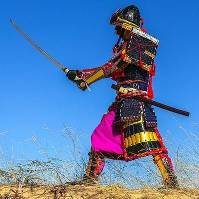 SAMURAI, ANCIENT, SWORD, WEAPON, WARRIOR, BLADE, COSTUME, ARISTOCRACY, JAPANESE