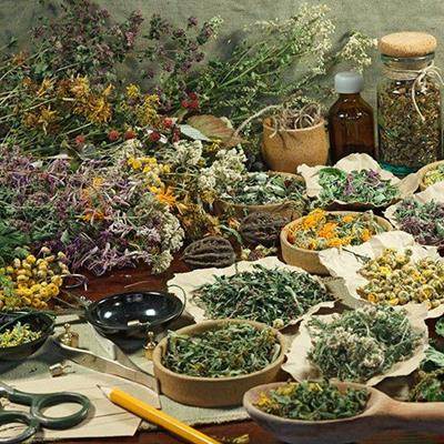 ALTERNATIVE, BOWLS, TREATMENT, PLANT, HERBS, MEDICINE, HEALING, LEAVES, SCISSORS