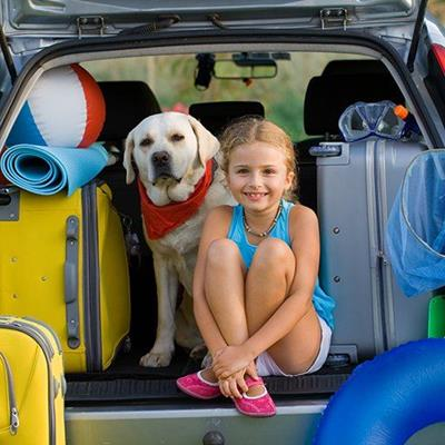 AUTOMOBILE, DOG, JOURNEY, KERCHIEF, SUITCASES, FAMILY, TRIP, BAG, TRAVEL, FISHNET, PACKED