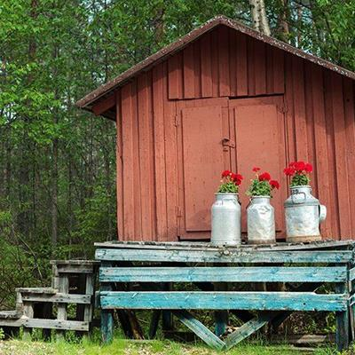 FLOWERS, DOORS, PRETTY, RURAL, THREE, HUT, CANISTERS, ROOF, STEPS, FOREST, COUNTRYSIDE
