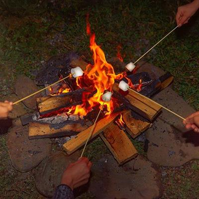 CAMPFIRE, FLAMES, MARSHMALLOW, STICK, FIRE, WOOD, BURNING, TOASTING, CHARCOAL, EMBERS, CHARRED