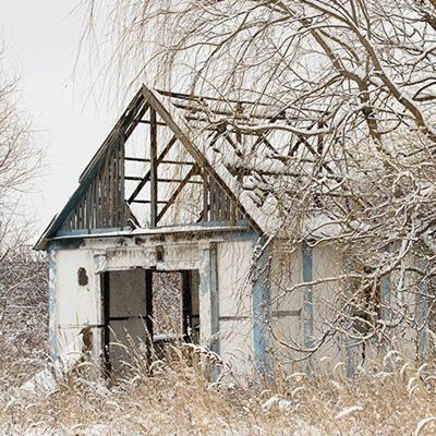 ABANDONED, RAFTERS, BRANCHES, WINTER, BUILDING, OUTHOUSE, BEAMS, TREE, SNOW, ROOF